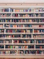 De oreja a oreja. Biblioteca Municipal Los Carteros