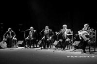 M. de Puchero - Flamenco a Voces