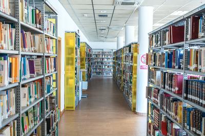 Una primavera de cuentos en las Bibliotecas del Distrito Este-Alcosa-Torreblanca: La piscina infinita