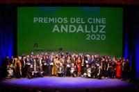 Entrega 33º Premios del Cine Andaluz