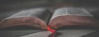 El Ayuntamiento impulsa el taller de novela histórica 'Una aventura literaria alrededor de las palabras', enmarcado en la programación oficial de los actos de conmemoración del V Centenario de la Primera Vuelta al Mundo