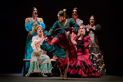La danza flamenca y el arte circense se dan cita esta semana en el Teatro Lope de Vega con '¡Viva!' e 'inTarsi'